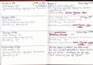 week-7-diary